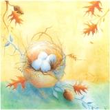 Blue_Nest_with_Acorns