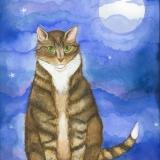 Full-Moon-Feline