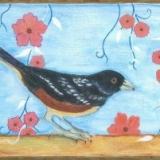 Spotted-Towhee