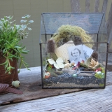 Terrarium-Photo-2-Tribute-to-Rebecca's-Mother-copy