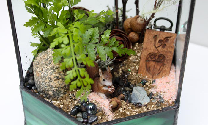 Themed Terrariums