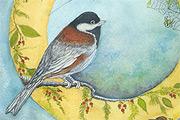 Bird  Cards Gallery